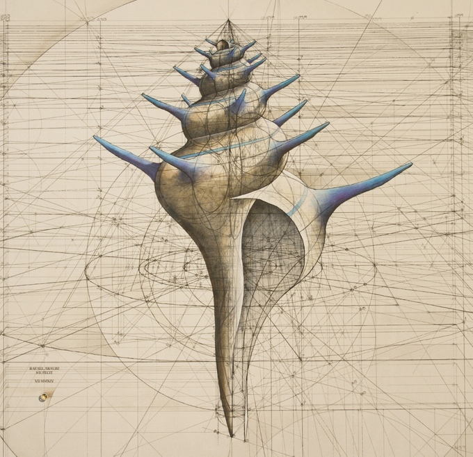 Gorgeous Golden Ratio Colouring Book